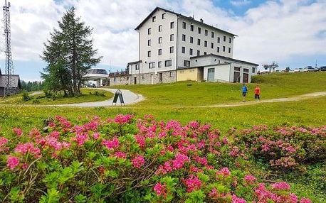 Rakouské Alpy: léto v Hotelu Berghof Tauplitzalm *** u lanovky + polopenze