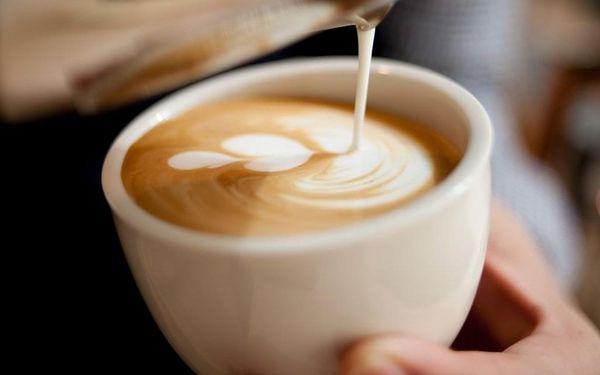 Celodenní kurz latte art2