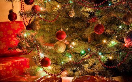 Vánoční LED osvětlení: řetězy, sítě i rampouchy