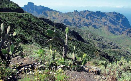 Tenerife s trekingem - turistika mezi sopkami a exotickými soutěskami, Kanárské ostrovy