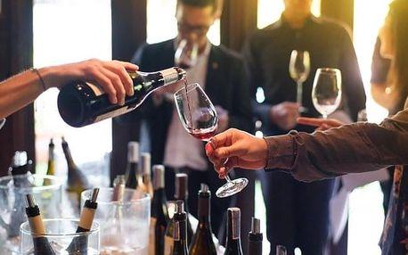 Jižní Morava: Penzion u Ivana v Bořeticích s degustací vín a občerstvením