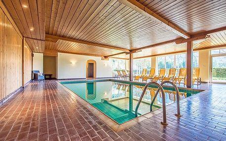 Tyrolské Alpy v 3* hotelu se vstupem do wellness i fitness a polopenzí pro jednoho