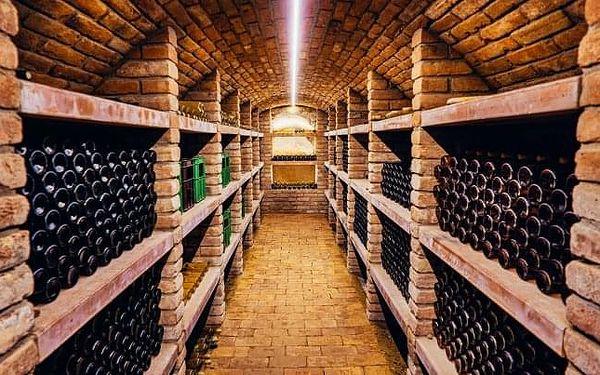 Vinařský pobyt u Znojma ve Vinařství Lintner s řízenou degustací a občerstvením