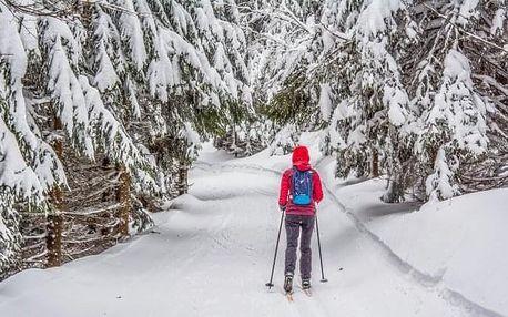 Jeseníky: Penzion Stonožka u skiareálů s polopenzí a wellness + dítě zdarma