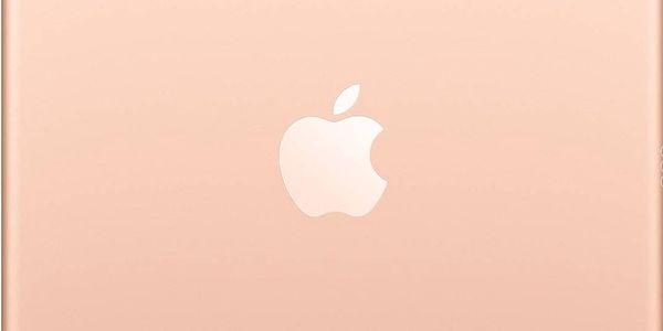 Dotykový tablet Apple Air (2019) Wi-Fi + Cellular 64 GB - Gold (MV0F2FD/A) + DOPRAVA ZDARMA4