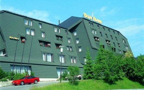 ALPINA*** - Kranjska Gora, Julské Alpy, vlastní doprava, snídaně v ceně5