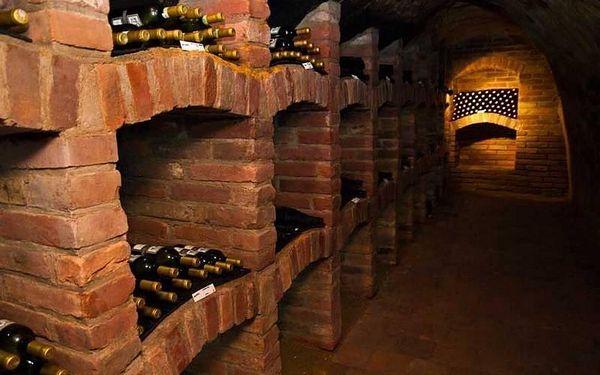 Silvestrovský vinařský pobyt 2019 v Dobšicích