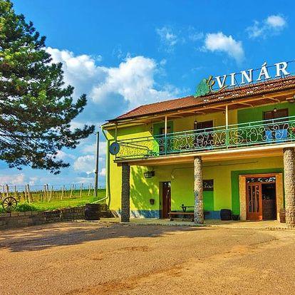 Jižní Morava v penzionu ve vinařské obci Čejč s degustací, lahví vína a polopenzí