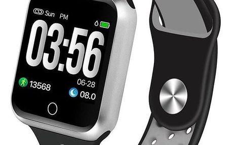 Chytré hodinky IMMAX SW10 černé/stříbrné (09015)