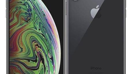 Mobilní telefon Apple iPhone Xs Max 256 GB - space grey (MT532CN/A)