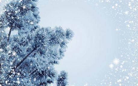 Vánoční stromeček, cukroví, štědrovečerní večeře na 3 noci ve Strážném