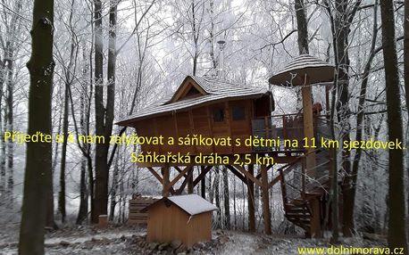 Dolní Morava: Treehouses Sněžník