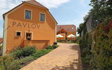 Pavlov: Hotel Pavlov nedaleko vodní nádrže Nové Mlýny