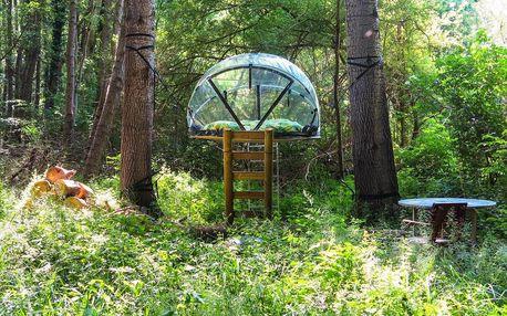 Střední Francie: Les Bulles du Rocher de Fontainebleau
