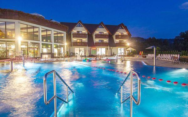 Celodenní vstup pro 1 osobu: bazény2