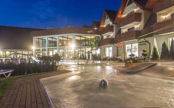 Celodenní vstup pro 1 osobu: bazény5
