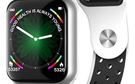 Chytré hodinky IMMAX SW13 stříbrné/bílé (09022)