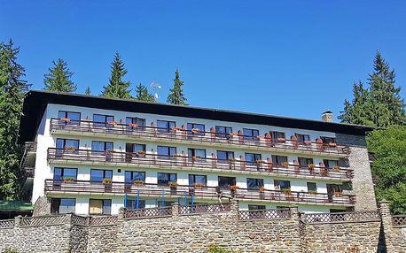 Šumava v hotelu s polopenzí, saunou, vířivkou a zapůjčením koloběžek, kol nebo holí na Nordic walking