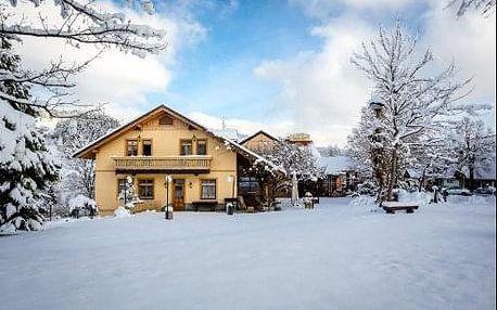 Zimní pobyt plný aktivit s možností lyžování ve Slovinsku v penzionu Smogavc