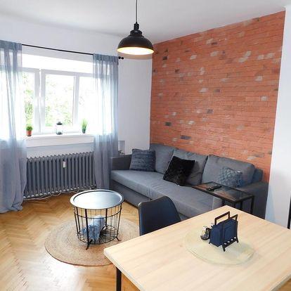 Ústí nad Labem: Apartmán Dvořákova