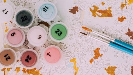 Malování podle čísel - kreativní sady