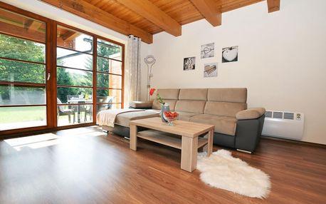 Říčky v Orlických horách: Apartmán U Sikorek