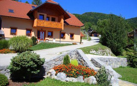 Slovinsko: Apartmány Trebušak
