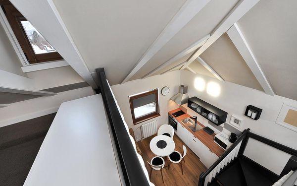 Apartmán s 1 ložnicí (2 dospělí)2