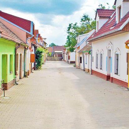 Jižní Morava ve sklípku kousek od Hodonína s možností degustace, výběr ze 2 míst