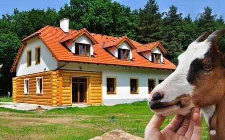 Nezapomenutelný zážitek na farmě s možností péče o místní zvířata