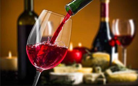 Jižní Morava: Penzion U Vinařství s polopenzí, vířivkou a vínem rodiny Šabatů