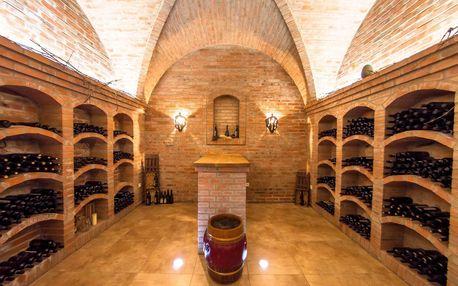 Stylový penzion na Moravě s polopenzí a možností degustace vína pro dva