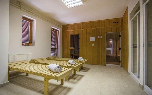 Hotel FLORES, Chorvatsko, Istrie, Poreč, Istrie, vlastní doprava, snídaně v ceně3