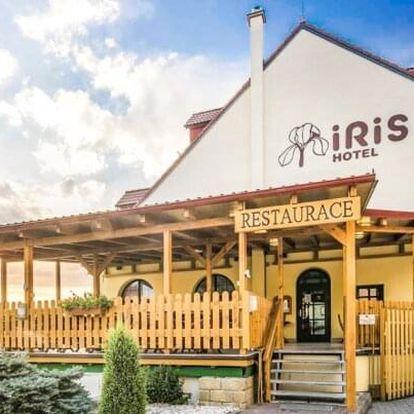 Pálava mezi vinicemi a sklípky: Wellness Hotel Iris *** s polopenzí a vířivkou