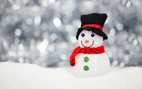 Vánoční stromeček, cukroví, štědrovečerní večeře na 4 noci ve Strážném