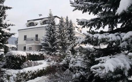 Kouzelná zima ve Villa Nečas ****