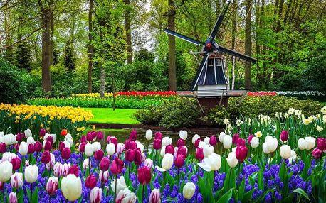 Tulipánový Keukenhof, Amsterdam i ochutnávka holandských sýrů, Keukenhof