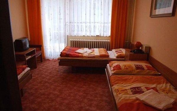 Dvoulůžkový pokoj s manželskou postelí nebo oddělenými postelemi3