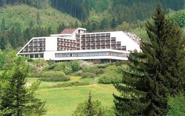 Ubytování v Hotelu Petr Bezruč přímo pod Lysou Horou