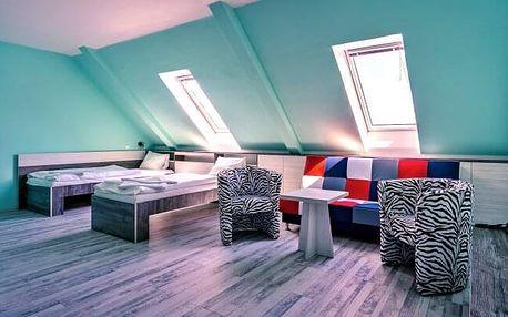 Znojmo v obklopení vinic v Hotelu N *** s polopenzí, posezením s vínem + sauna