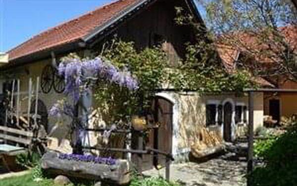 Slovinské termály Dobrna a víno, autobusem, polopenze2