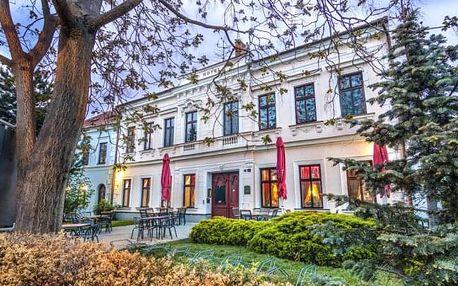 Jižní Morava: Hotel Drnholec *** s polopenzí + neomezené víno a privátní lázně