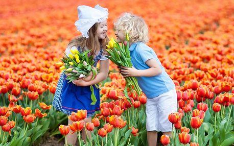 Velikonoční Amsterdam: 1 noc se snídaní a moře květin