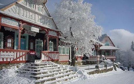 Vánoční pobyt Beskydy Valašsko Apartmány Vila Hedvika*** Rožnov...