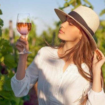 Zaječí na jižní Moravě v Penzionu U Palečků s wellness, vínem a polopenzí