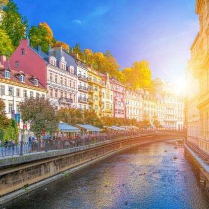 Březová u Karlových Varů: Hotel St. Michael *** se snídaní + vířivka a masáž
