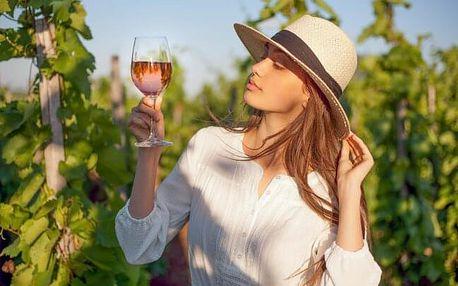 Zaječí na jižní Moravě v Penzionu U Palečků s polopenzí, parádním rautem, ochutnávkou vín a prohlídkou vinic