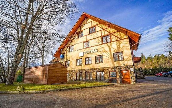 Vysoké Tatry 1 km od lanovky na Lomnický štít v Hotelu Tulipán *** s wellness a polopenzí