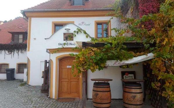 Za vínem a do termálních lázní, 2 dny (1 noc), počet osob: 1 osoba, Mikulov (Jihomoravský kraj)2