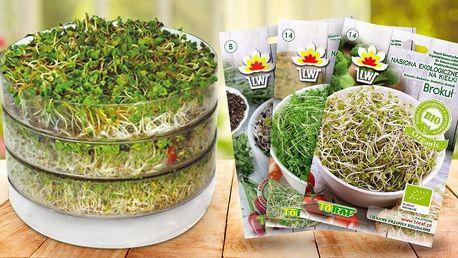 Třípatrová biomiska na klíčení a 29 druhů semen
